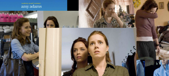 A collage of images from Sunshine Cleaning (2008) starring Amy Adams and Emily Blunt